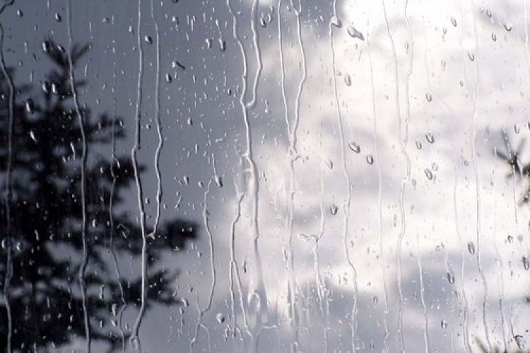 rain2_0_0_1